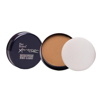 Blue Heaven Cosmetics Xpression Pan Cake 74 (Golden Honey) 16 Gms